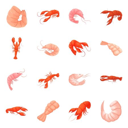 Isolated object of shrimp and crab icon. Collection of shrimp and sea vector icon for stock.