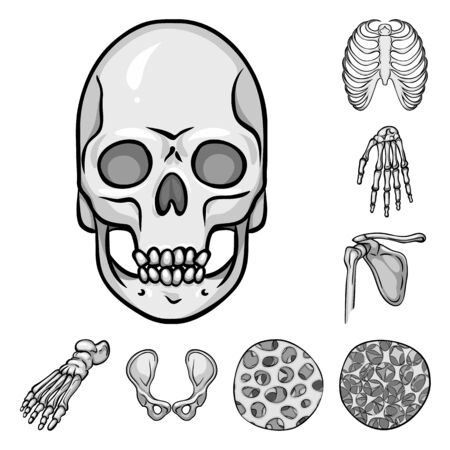 Vector illustration of biology and medical symbol. Set of biology and skeleton vector icon for stock.