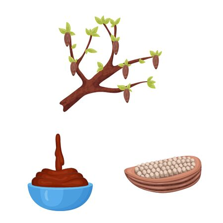 Vector design of cocoa and beans. Collection of cocoa and sweetness vector icon for stock.