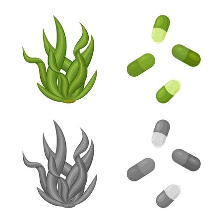 Vector illustration of protein and sea. Collection of protein and natural vector icon for stock. Ilustração