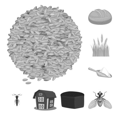 Isolated object of rye and plant. Set of rye and corn vector icon for stock. Banque d'images - 129981419