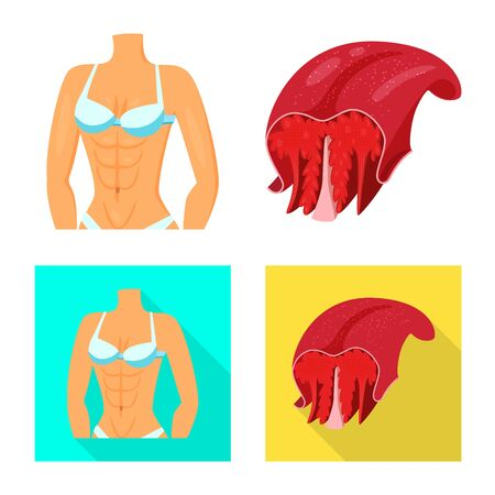 Isolated object of fiber and muscular symbol. Collection of fiber and body vector icon for stock. Ilustração