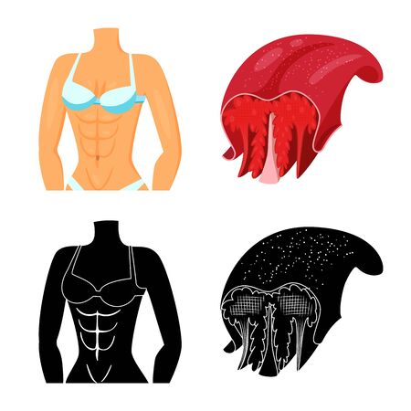 Vector design of fiber and muscular icon. Set of fiber and body vector icon for stock. Иллюстрация