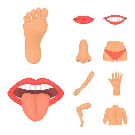 Vector illustration of body and part logo. Collection of body and anatomy stock vector illustration. Standard-Bild - 130283979