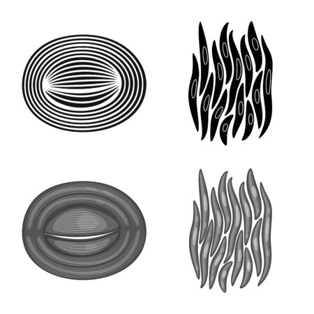 Vector design of fiber and muscular logo. Set of fiber and body vector icon for stock. Ilustracja