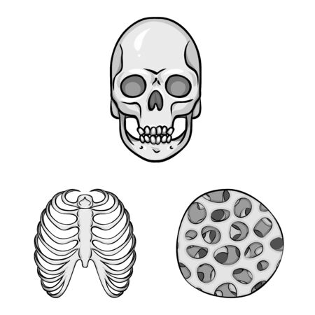 Vector design of biology and medical icon. Set of biology and skeleton stock vector illustration.