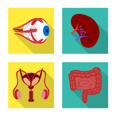 Isolated object of human and health icon. Collection of human and scientific stock symbol for web.