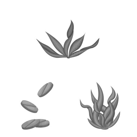 Vector design of plant and weed symbol. Set of plant and sea vector icon for stock.