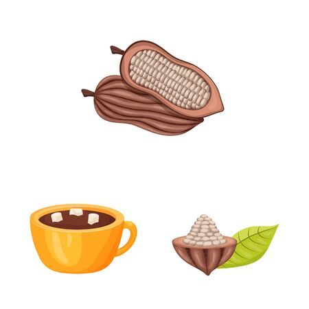 Vector design of cocoa and beans logo. Collection of cocoa and sweetness vector icon for stock.