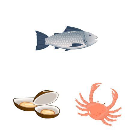Vector illustration of food and sea symbol. Set of food and healthy stock vector illustration.