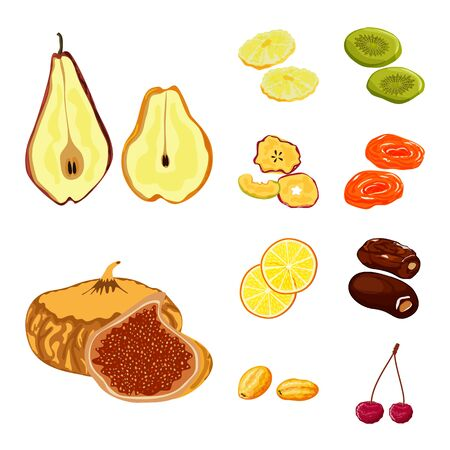 Vector design of fruit and dried sign. Collection of fruit and food stock vector illustration.