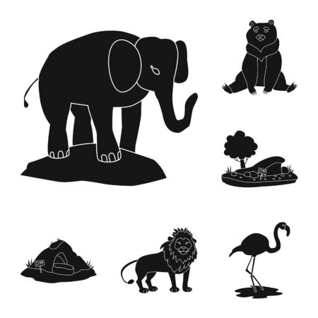 Vector design of fauna and entertainment icon. Collection of fauna and park stock vector illustration.