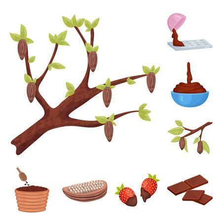 Isolated object of cocoa and beans sign. Collection of cocoa and sweetness stock vector illustration.