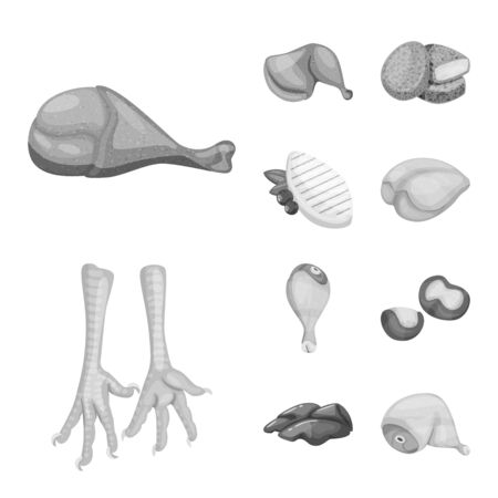 Vector illustration of cuisine and bird symbol. Collection of cuisine and poultry stock symbol for web.