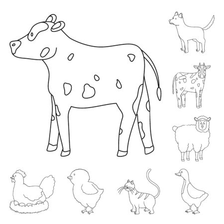 Vector illustration of homemade and countryside sign. Set of homemade and agriculture vector icon for stock.