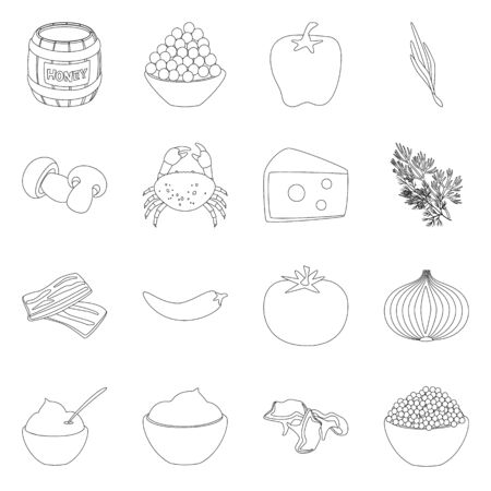 Vector design of seasonin and ingredient icon. Collection of seasonin and aroma stock vector illustration.
