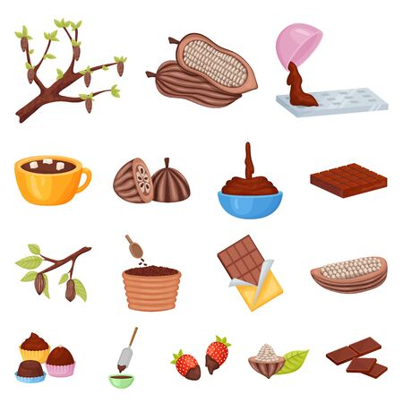 Vector illustration of cocoa and beans icon. Collection of cocoa and sweetness stock symbol for web.