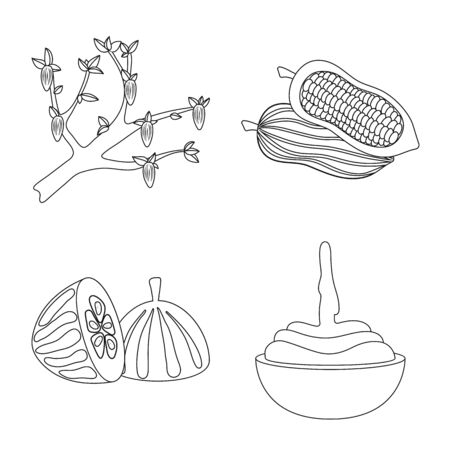 Vector design of cocoa and beans symbol. Collection of cocoa and sweetness stock vector illustration.