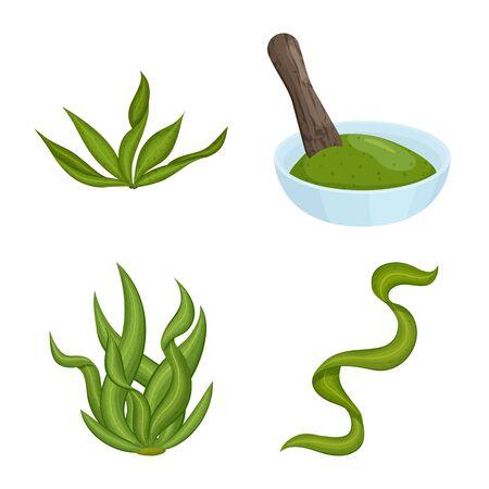 Vector illustration of spirulina and seaweed icon. Set of spirulina and vegan stock vector illustration.
