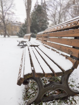 Winter park bench photo