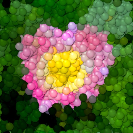 Rose flower image balls generated hires texture Stock Photo