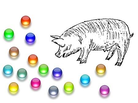 Casting pearls before swine 스톡 콘텐츠