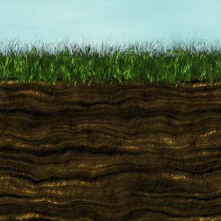 soil texture: Grass with soil generated texture