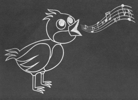 Singing bird on chalkboard photo