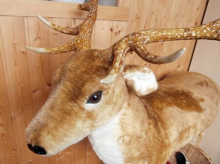 plush: Stuffed plush deer Stock Photo