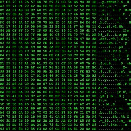 hexadecimal: Computer data flow