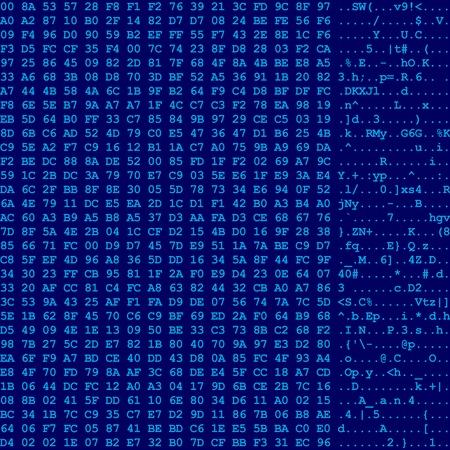 computer data: Computer data flow