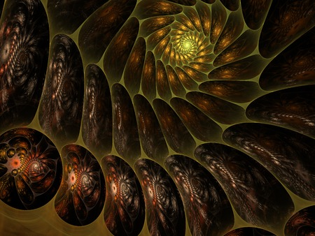 Fractal flames Stock Photo - 50223744
