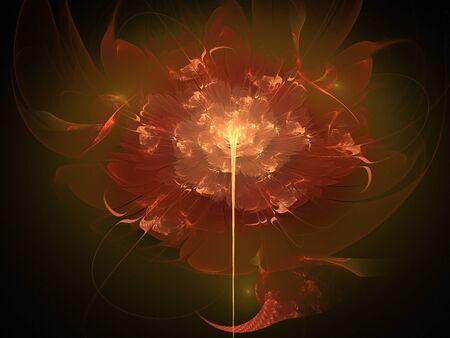 fractal: Fractal flower