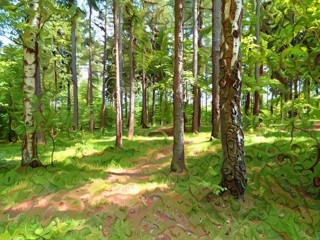 Forest-Pfad