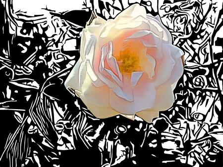 rose bush: Rose with bush silhouette
