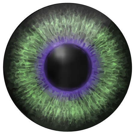 dilated pupils: Eye iris vector texture