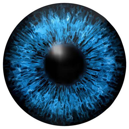 Tęczówki oczu tekstury Ilustracje wektorowe