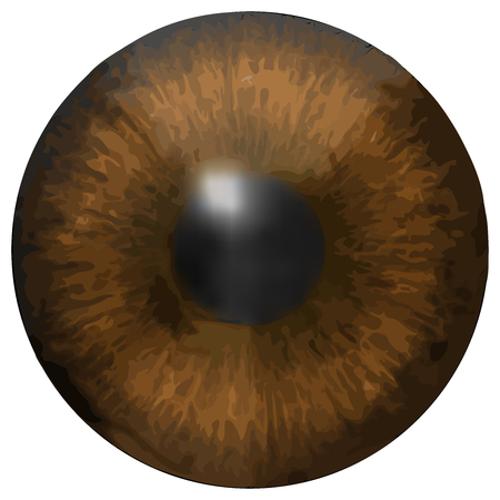 dilated pupils: Eye iris texture Illustration