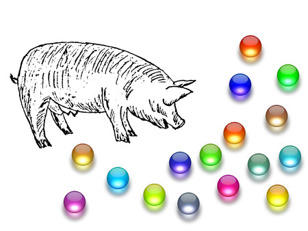 before: Casting pearls before swine Stock Photo