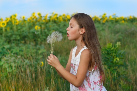 A little girl is in the field photo