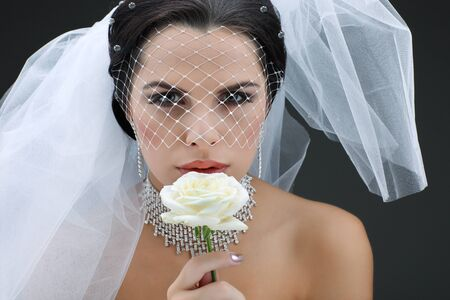 Portrait of beautiful bride. Wedding dress. Wedding decoration Stock Photo - 15309850