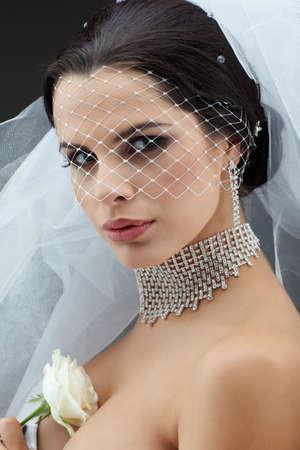 Portrait of beautiful bride. Wedding dress. Wedding decoration Stock Photo - 16862152