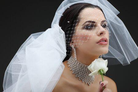 Portrait of beautiful bride. Wedding dress. Wedding decoration Stock Photo - 16862305