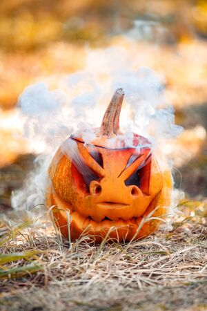 Carved pumpkin jack-o-lantern isolated on ground halloween preparation concept close-up Imagens