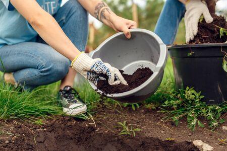 Jóvenes, niñas y niños voluntarios al aire libre ayudando a la naturaleza a plantar árboles poniendo fertilizante en primer plano del agujero