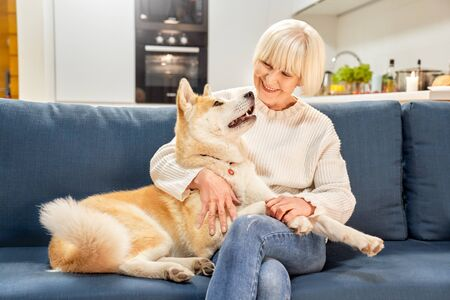 Retirement. Senior woman sitting at home hugging siberian husky smiling happy close-up Stock Photo