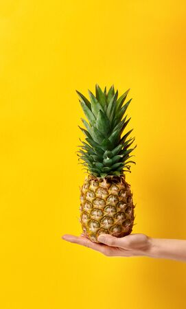 Female hand holds ripe juicy organic asian pineapple. Creative fashion concept isolated on yellow summer fun background. Great photo for advertising fresh produce, fruits. Healthy idea for diet detox.