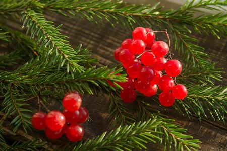 decorative viburnum and spruce