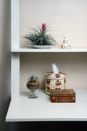 decorate: Interior decorate by small cactus made to closer to nature. Stock Photo