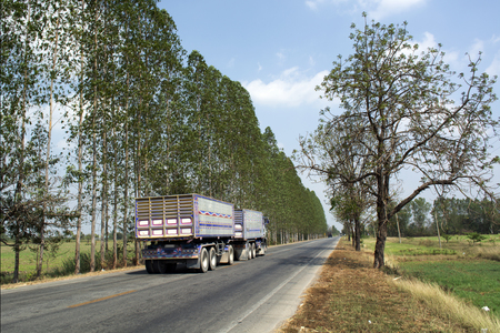 Agricultural trailer truck on the rural roads of Asia.